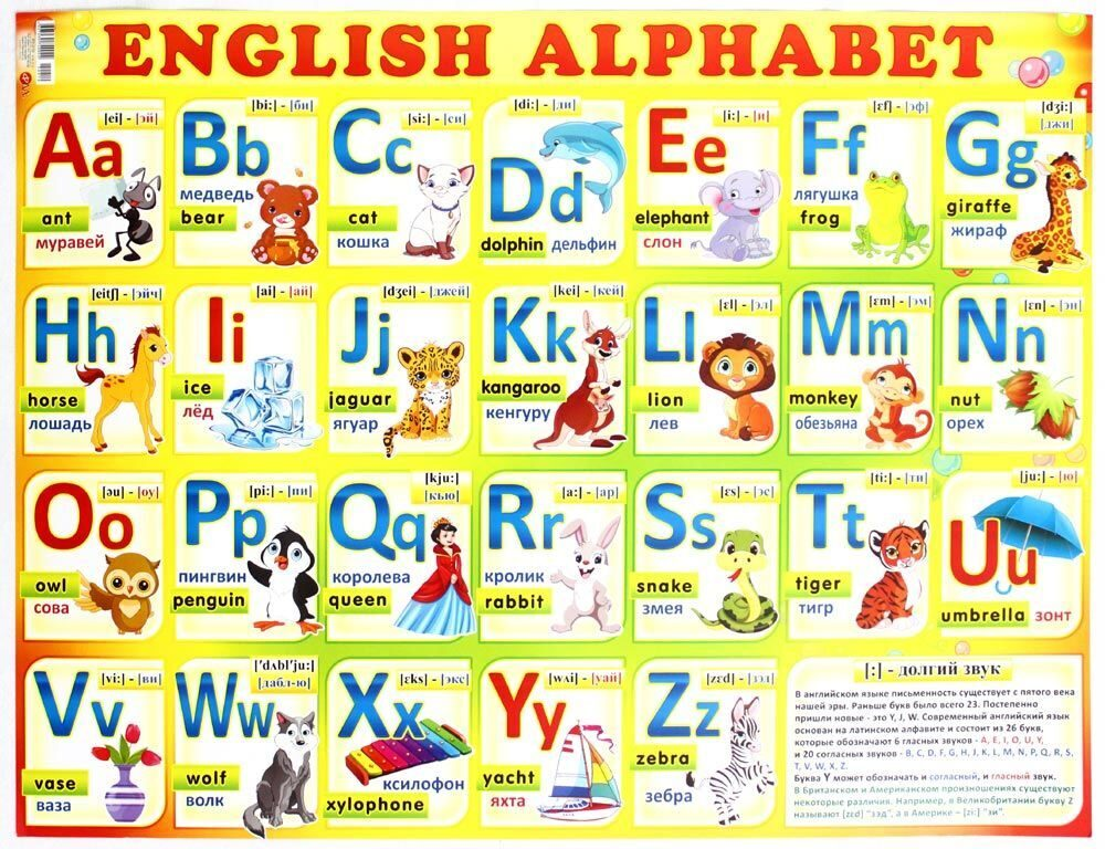 alphabets in english Translation of japanese alphabet in english translate japanese alphabet in english online and download now our free translator to use any time at no charge.