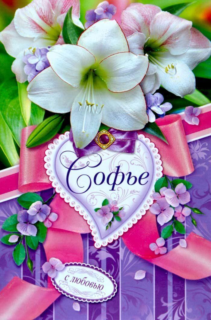 София с днем рождения открытки с 81
